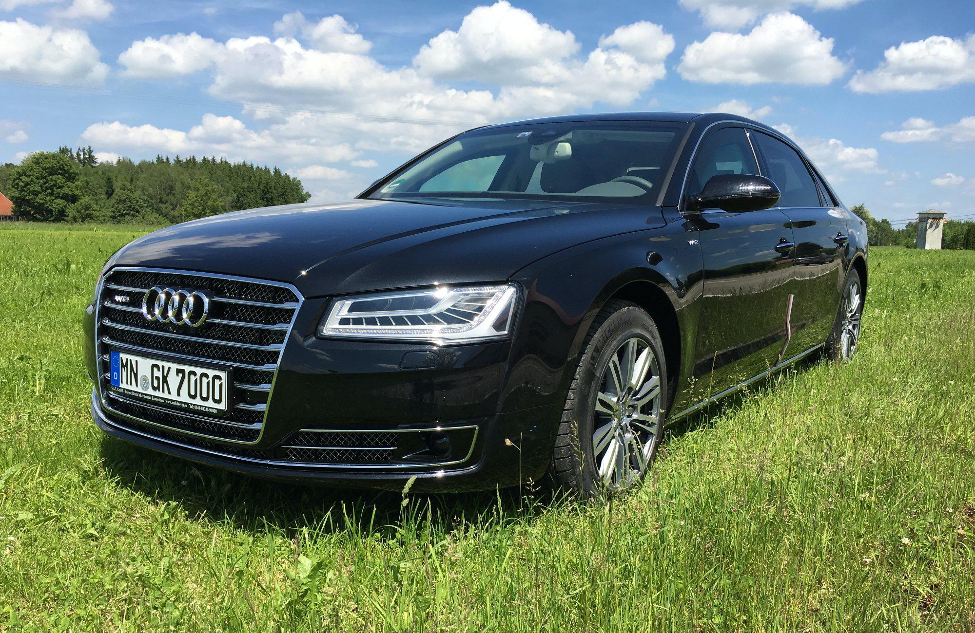 Audi auf Wiese